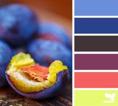 color bite color palettes, design seeds, color combos, blue, color combinations, color bite, colour palettes, bright colors, plum