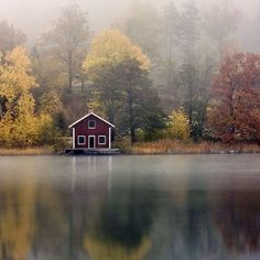 lake houses, cottag, travel photos, dream, travel tips, scandinavian cabin, autumn falls, summer houses, scandinavian forest