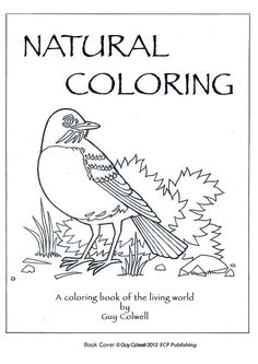 20 FREE Printable Animal Coloring Pages