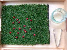 Smiling like Sunshine: 15 Montessori Inspired Ladybird Activities  Kid Blogger Network Cash Giveaway
