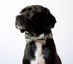 Thistle Leaf Dog Bowtie Collar by SillyBuddy on Etsy, $42.00
