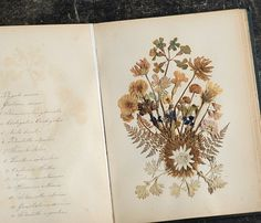 Herbarium -★-