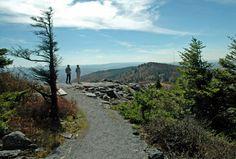 """Whispering Spruce Trail"" ~ Spruce Knob, WV by Rick Burgess"