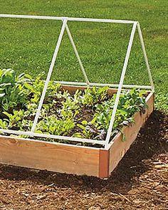 small vegetable gardens, gardens with decking, garden layouts, round garden, covered vegetable garden, strawberri, veget garden, raised garden bed protection, small vegetables garden