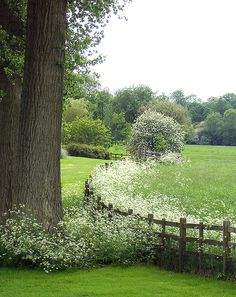 farm, white gardens, white flowers, surrey england, country life, place, natural garden, countri, garden fences