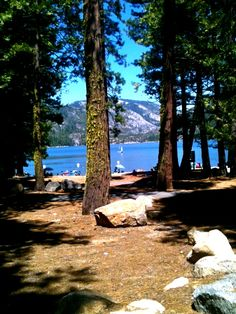 Pinecrest, CA...Screw the leaches at melones Its FamilyTime at Pinecrest♥