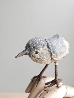 oh albatross - little bird