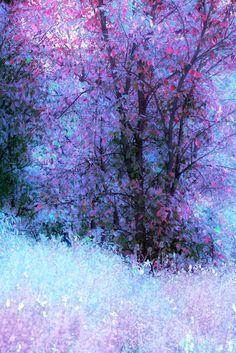 light blue & lavender leaves