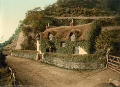 shell, devon england, beauti place, cottages, beauti hous, swiss cottag, paradi express, medium, britain