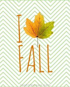 I <3 Fall