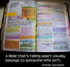 Good used Bible