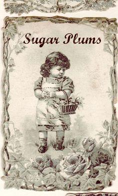sugar plums, ephemera, vintage labels, printable labels, craft idea, holidays, diy printabl, cottages, kids