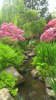 Shofuso Japanese House and Garden in West Fairmount Park, Philadelphia