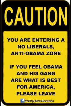 OBAMA CARTOONS: Anti-Obama Zone