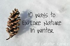 10 Ways to Explore Nature in the Winter