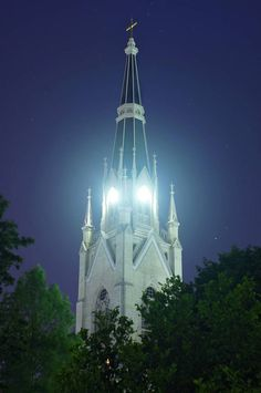 basilica steepl, church steepl, univers, notr damehom, fighting irish