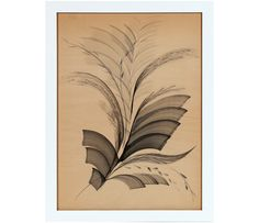 20th Century Abstracted Ink Feather by Unidentified