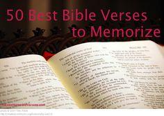 The 50 Best Bible Verses to Memorize