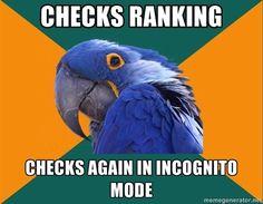 Paranoid Parrot #SEOJokes