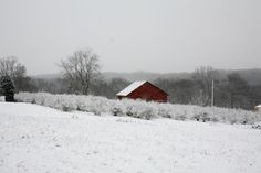 Shippenville, Clarion County, PA. January 2012.