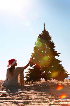 christma tree, beach girl, at the beach, beach life, coastal christmas