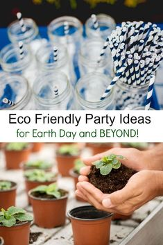 Throw an eco friendly party! Natural party decorations and reducing your garbage output are easy green party ideas to reduce your carbon footprint. via @DianeHoffmaster