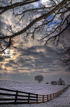 fenc, field of dreams, snowi field