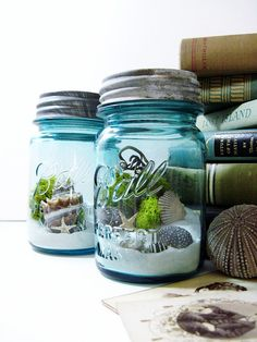 Clever - blue mason jars filled with white sand, shells and urchins. Like having a pint-size bit of the Gulf Coast, right on your shelf.