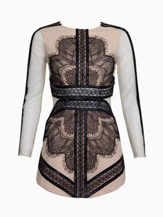 Contrast Lace Panel Dress