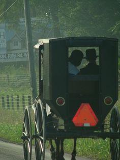 Ohio Amish buggy