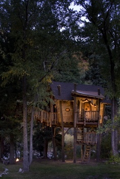 dream, tree houses, treehous, trees, backyard, crystal, place, kid, river