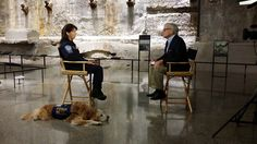 Today, Denise Corliss and former Texas Task Force 1 search dog Bretagne visited the 9/11 Memorial Museum and were interviewed by former NBC anchor Tom Brokaw!  Please vote for Bretagne in the Hero Dog Contest. You can vote daily through Sept. 15 at http://www.herodogawards.org/vote/.  #TEEX   #USAR   #HeroDog