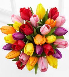 Captured in Color 30 Stem Tulip Bouquet