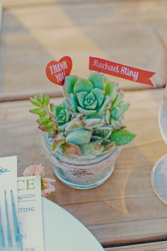 Succulents as favors at each placesetting // Photo by  Lindsey Gomes Photography, see more: http://theeverylastdetail.com/mint-orange-california-vineyard-wedding/