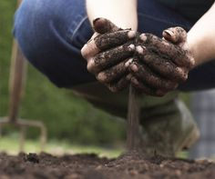 How to Amend Your Soil