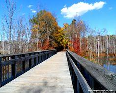 The American Tobacco trail in North Carolina