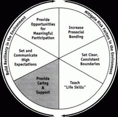 "The Resiliency Wheel captures  6 common themes identified in the lives of individuals who in their young lives might likely have been considered to be ""at risk"" but who have somehow surpassed others with similar obstacles. The themes include  boundaries, care, meaningful participation, bonding, standards, and tools."