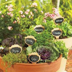 Garden Markers - Keep track of what's growing in your garden w/ these Terra Cotta Garden Stakes.