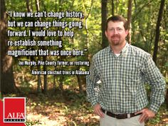 Pike County farmer and The American Chestnut Foundation member Joe Murphy