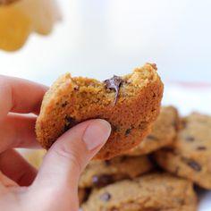 Grain-Free Pumpkin Chocolate Chip Cookies {Paleo} | Meaningful Eats