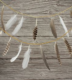 Found feathers are a gift from the spirit world.
