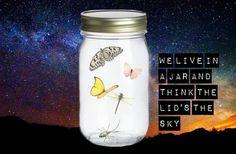 In A Jar by JayTheJedi.deviantart.com on @deviantART