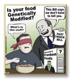 Dangers of GMO- genetically modified foods