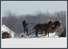 Amish getting around in winter.