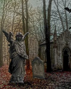 cemetery angels, grave angel, angels among us, grave yard, cemeteri angel, weeping angels, graveyard