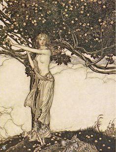 Arthur Rackham, Freya Goddess of Youth, 1910, via Flickr.  (i.e. Goddess of fertility - with her cats)