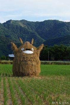Totoro, Japan