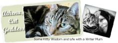 Athena, Cat Goddess: Charity Tuesday: Blog the Change for Animals #BtC4A