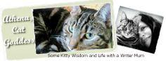 Athena, Cat Goddess: Charity Tuesday: Blog the Change for Animals #BtC4A cat goddess