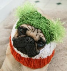 Irish Flag Pug Alien Hat